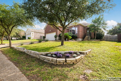 San Antonio Single Family Home For Sale: 20430 Wild Springs Dr