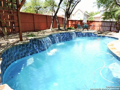 San Antonio Single Family Home New: 25827 Trickling Rock