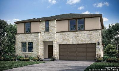 San Antonio TX Single Family Home New: $308,120