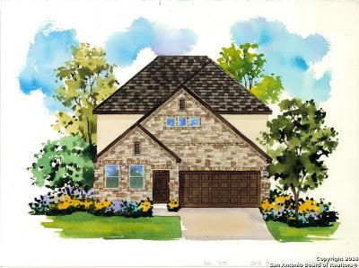San Antonio TX Single Family Home New: $318,707