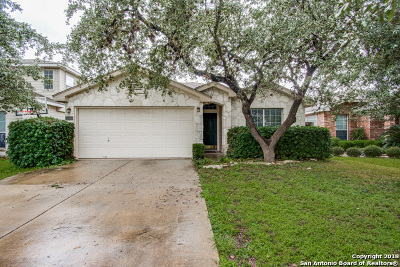 San Antonio Single Family Home New: 8023 Wever Crossing