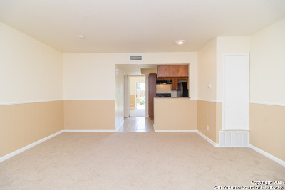 San Antonio Condo/Townhouse New: 170 De Chantle Rd #701G
