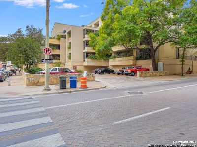 Bexar County Condo/Townhouse New: 701 St Marys St #17