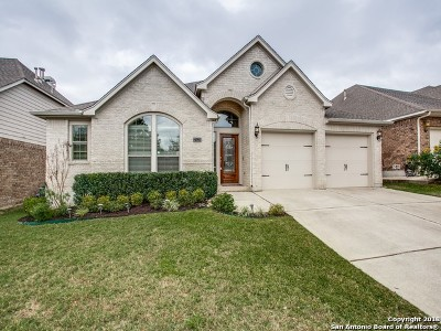 San Antonio TX Single Family Home New: $302,000