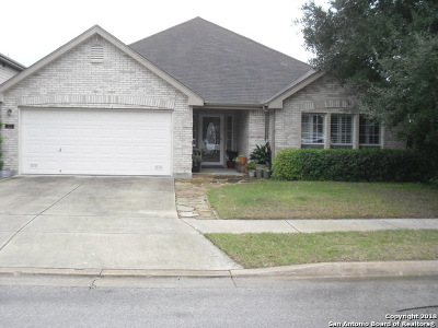 Guadalupe County Single Family Home New: 221 Rocky Ridge Dr