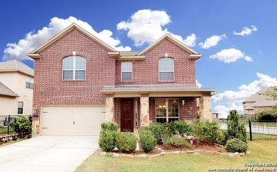 San Antonio TX Single Family Home New: $425,000