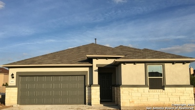 New Braunfels Single Family Home New: 3953 Legend Woods