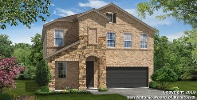 San Antonio TX Single Family Home New: $254,990