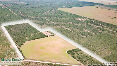 Atascosa County Farm & Ranch New: 000 Cr 300 Tract 1