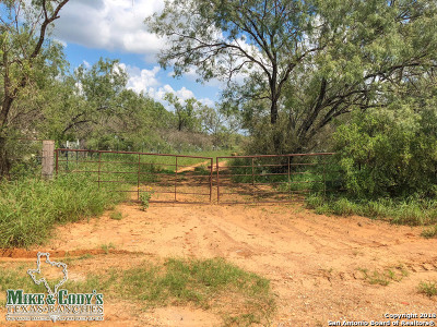Atascosa County Farm & Ranch New: 002 Cr 300 Tract 3