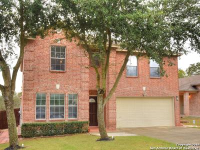 San Antonio TX Single Family Home New: $199,500