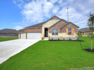 Bexar County Single Family Home For Sale: 28047 San Clemente