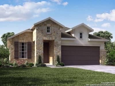 San Antonio TX Single Family Home New: $304,202