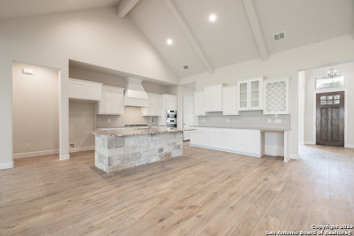 San Antonio Single Family Home New: 17623 Hillsedge