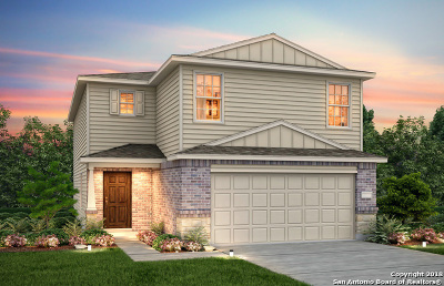 Single Family Home New: 12025 Silver Mist Way