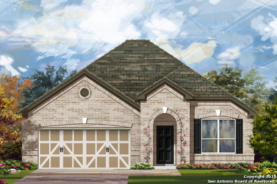 Cibolo Single Family Home New: 312 Landmark Oak