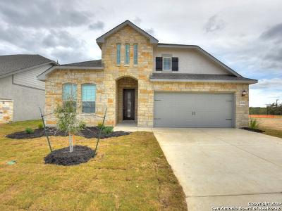 San Antonio TX Single Family Home New: $314,990