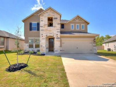San Antonio TX Single Family Home New: $348,397