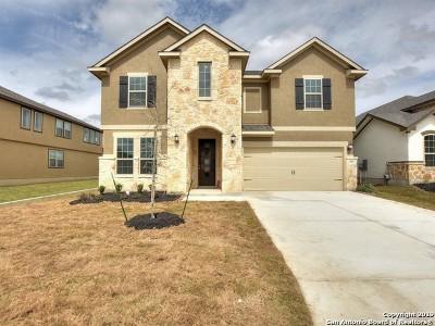San Antonio TX Single Family Home New: $364,990