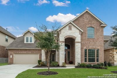 San Antonio Single Family Home New: 24314 Vinca Reef