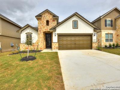 San Antonio TX Single Family Home New: $304,990