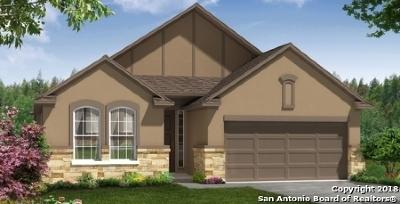 San Antonio TX Single Family Home New: $301,990