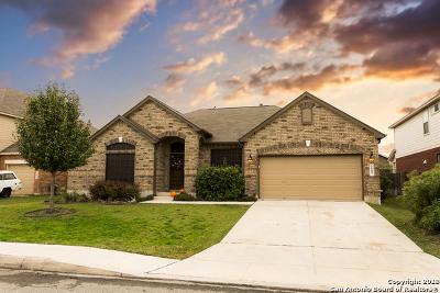 San Antonio TX Single Family Home New: $320,000