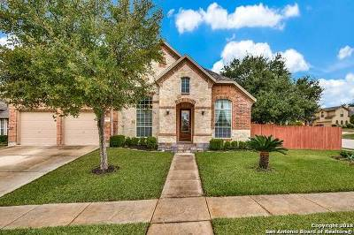Helotes Single Family Home New: 15739 Amador Rio