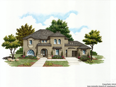 San Antonio Single Family Home New: 10307 Carnauba Trail