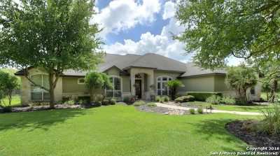 Single Family Home For Sale: 8215 Wild Wind Park