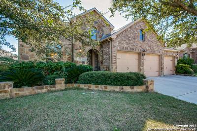 San Antonio Single Family Home New: 12518 Alstroemeria