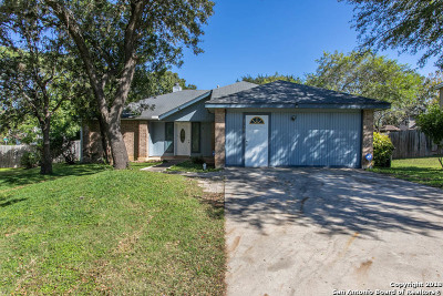 Single Family Home For Sale: 8730 Welles Dale