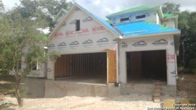 San Antonio Single Family Home New: 25906 Tivoli Meadows