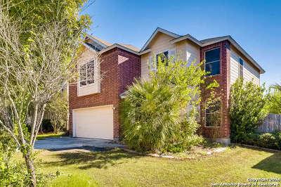 San Antonio Single Family Home New: 4030 Flowing Path