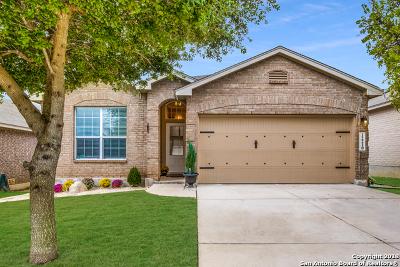 San Antonio Single Family Home New: 12210 Dewitt Way