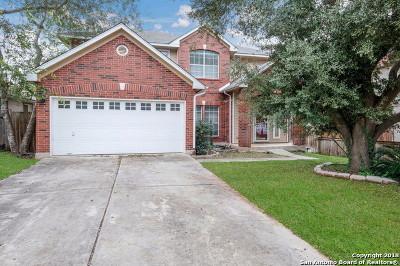 San Antonio Single Family Home New: 4627 Aspen View