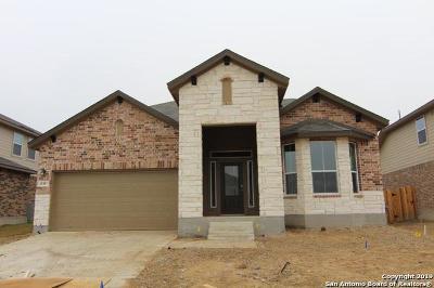 San Antonio TX Single Family Home New: $281,100