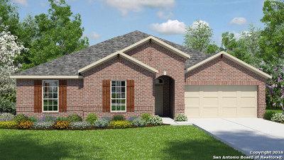 San Antonio TX Single Family Home New: $327,875