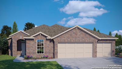 San Antonio TX Single Family Home New: $289,880