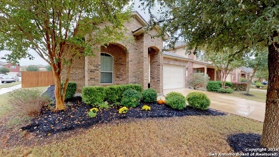Alamo Ranch Single Family Home Active Option: 6303 Black Bear
