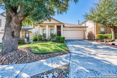San Antonio TX Single Family Home New: $214,995