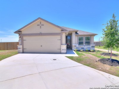 San Antonio TX Single Family Home New: $234,990