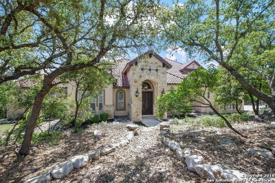 Helotes Single Family Home New: 710 Vegas Rio