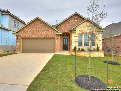 Helotes Single Family Home For Sale: 16914 Kinmount Lane