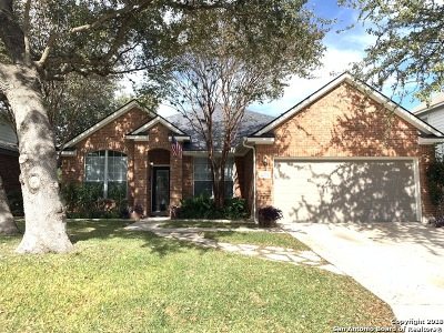 San Antonio Single Family Home New: 10619 Ashwell