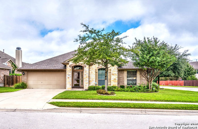 Round Rock Single Family Home For Sale: 4231 Adagio Pl