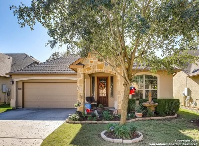 San Antonio Single Family Home New: 3634 Cypress Cape