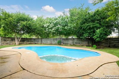 San Antonio Single Family Home New: 4003 Tallulah Dr
