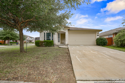 San Antonio Single Family Home New: 11002 Arabian Palm