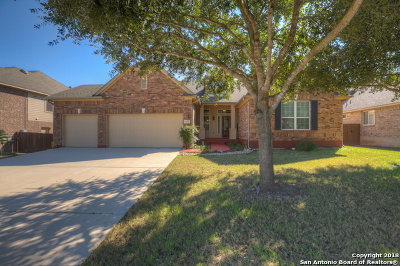 Cibolo Single Family Home For Sale: 117 Watson Way